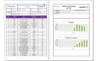 relatorio pdf excel